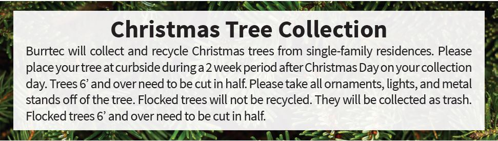 Christmas Tree Article -2019
